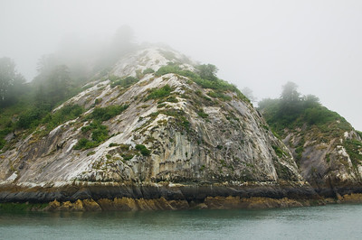 Glacier Bay rookery 3