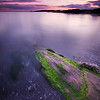 The sun sets over an algae covered rock at Kettle Cove in Cape Elizabeth, Maine.