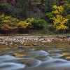 Fall colors and the Virgin River