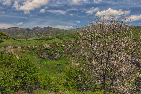 Collective Farm of Village Karindzh in the Mountains Tumanyan
