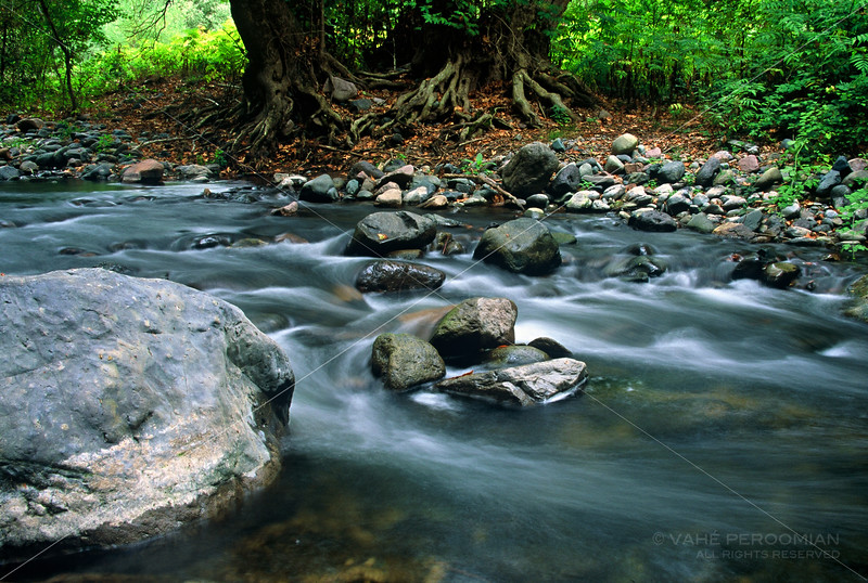 Boulders in the Tsav River