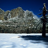 Snowy Meadow and Yosemite Falls