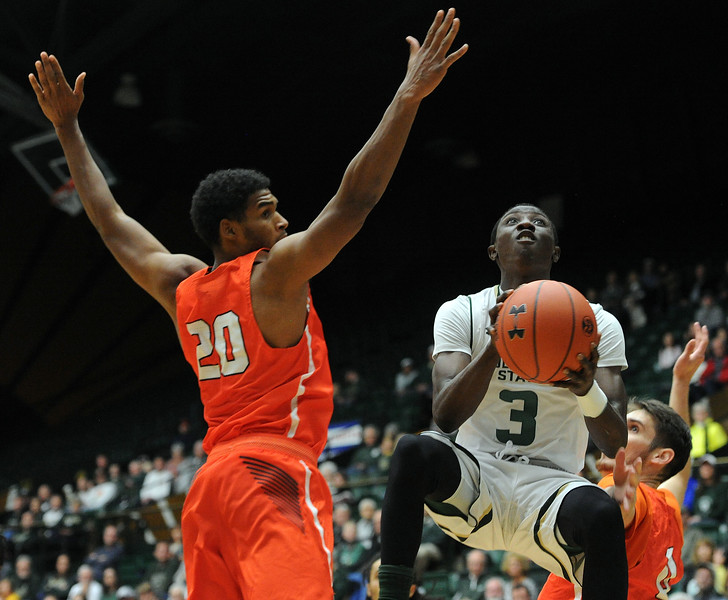 Kendle Moore splites two Sam Houston State defenders on his way to the basket. (Colin Barnard/Loveland Reporter-Herald)