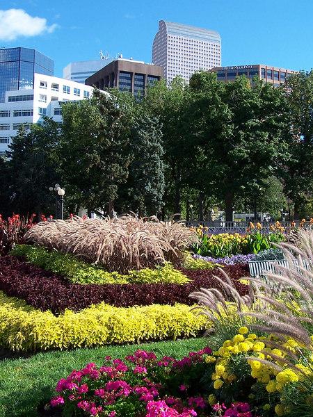 "Downtown Denver flowers and skyline including the ""cash register"" building."