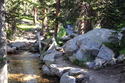 The trail winds back and forth across North St. Vrain creek for several miles.