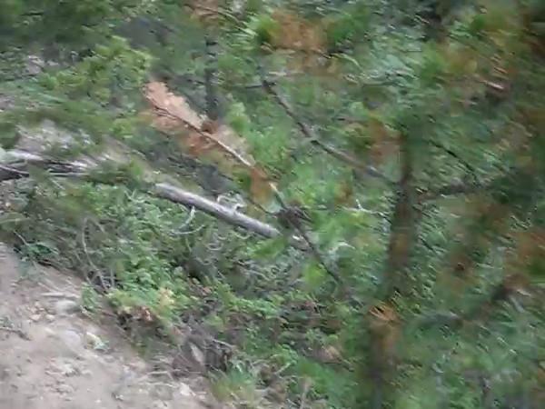 Video along a very steep ravine