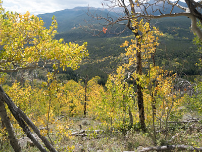 Fall on Bierstadt Lake Trail