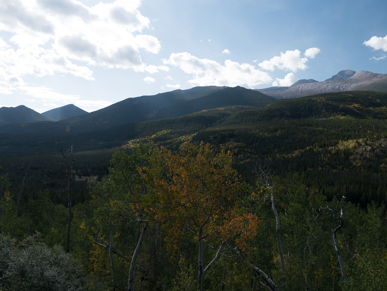 View of the Rockies