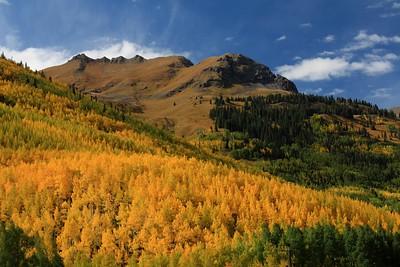 Colorado Autumn Fall Colors