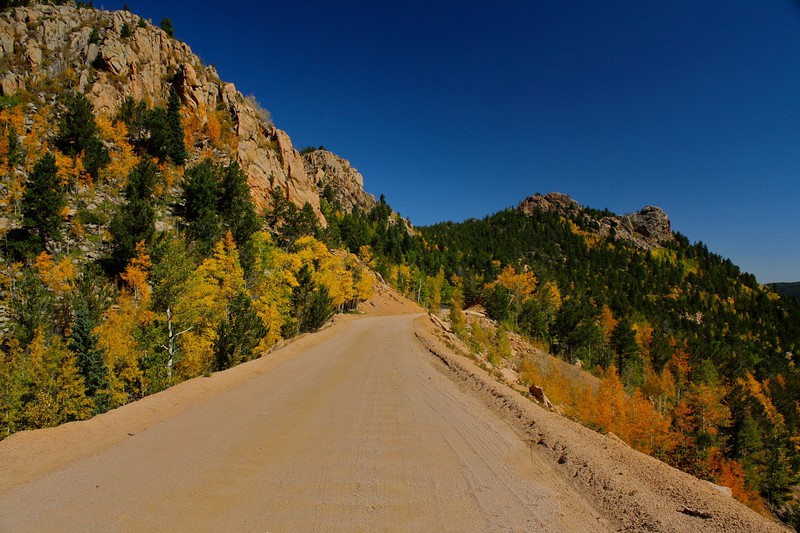 Autumn on Gold Camp Road