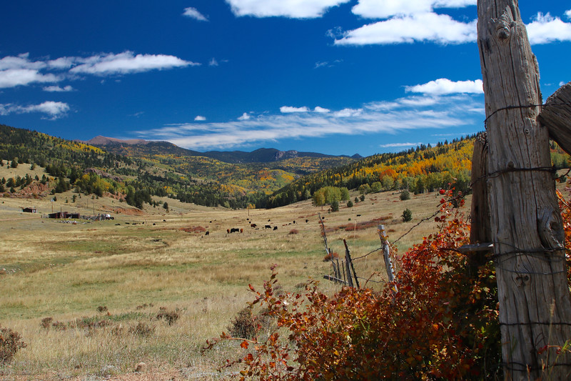 Ranchland West of Pikes Peak