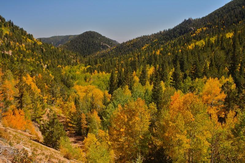 Gold Camp Autumn