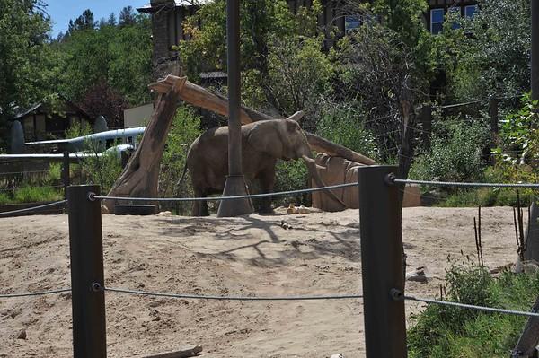 Cheyenne Mountain Zoo - September 2015