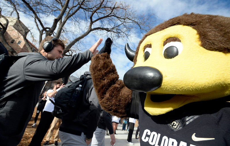Colorado California NCAA Football