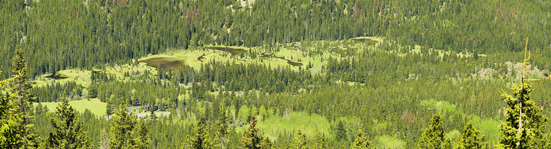 """Ancient beaver ponds along the upper Colorado River keep the pine forest at bay in the upper Kewuneeche Valley.  <A HREF=""""http://dbdimages.smugmug.com/photos/203075784-O.jpg""""TARGET=""""blank"""">View Larger Image</A> (And use your browser's zoom if necessary.)"""