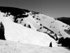 Aspen and the High Noon Lift in Sundown Bowl.<br /> Black and White<br /> March 1, 2011<br /> Vail, Colorado