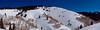 Aspen in Sundown Bowl.<br /> March 1, 2011<br /> Vail, Colorado<br /> (3.3:1 aspect ratio)