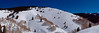 Aspen in Sundown Bowl.<br /> March 1, 2011<br /> Vail, Colorado<br /> (3:1 aspect ratio)