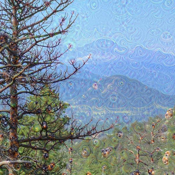 Gem Lake Trail #1 - Detail #4