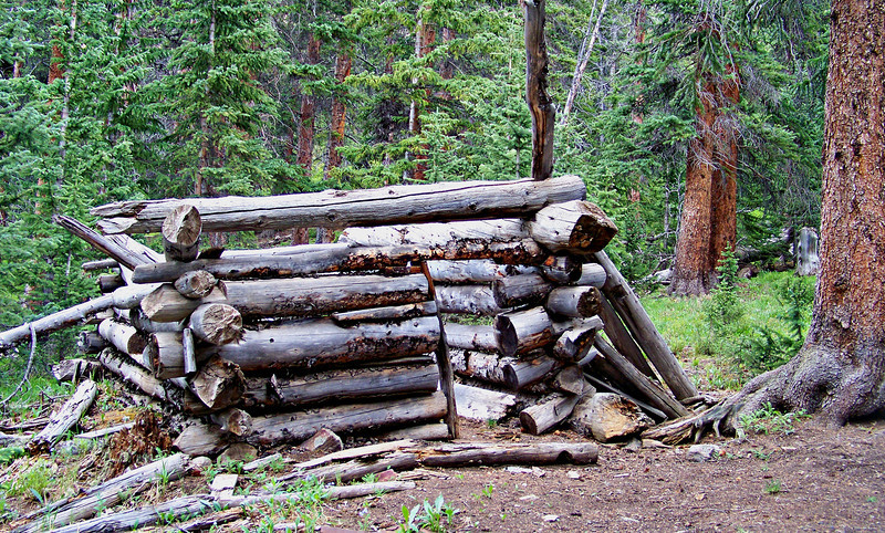Ruins of an ancient cabin in the Southfork Silver Creek drainage between Redcloud and Sunshine Peaks.