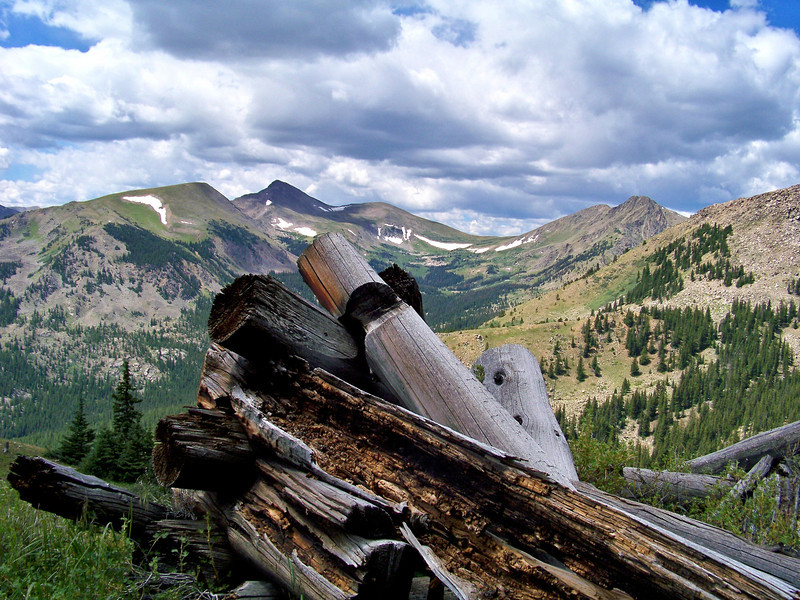 Remnants of a 19th century cabin at 12,000 ft. on Mount Yale, Colorado Sawatch Range