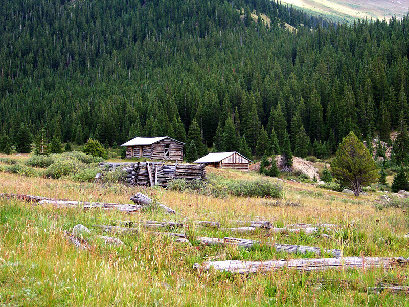"""Remnants of a """"neighborhood"""" row of cabins, Independence, Colorado (est. c.1880)."""