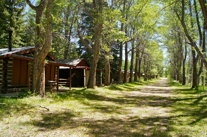 """An unusual """"ghost town"""" feature, carefully planted poplars line the main road through Vicksburg, Colorado."""