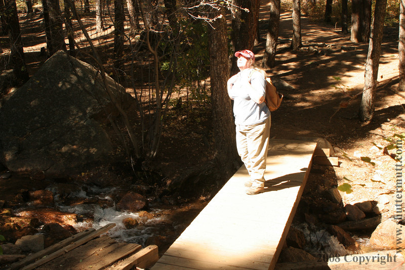 Bridge #1 Donna B. Hiking Partner