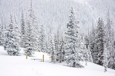 Old Monarch Pass