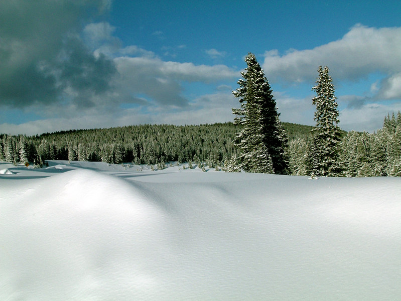 Rabbit Ears Pass, Colorado.<br /> The Winter Snowscapes of the Colorado Rockies.