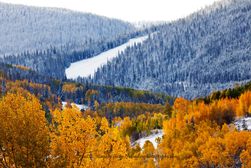 Autumn in Vail