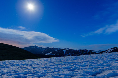 Moonlit Tundra