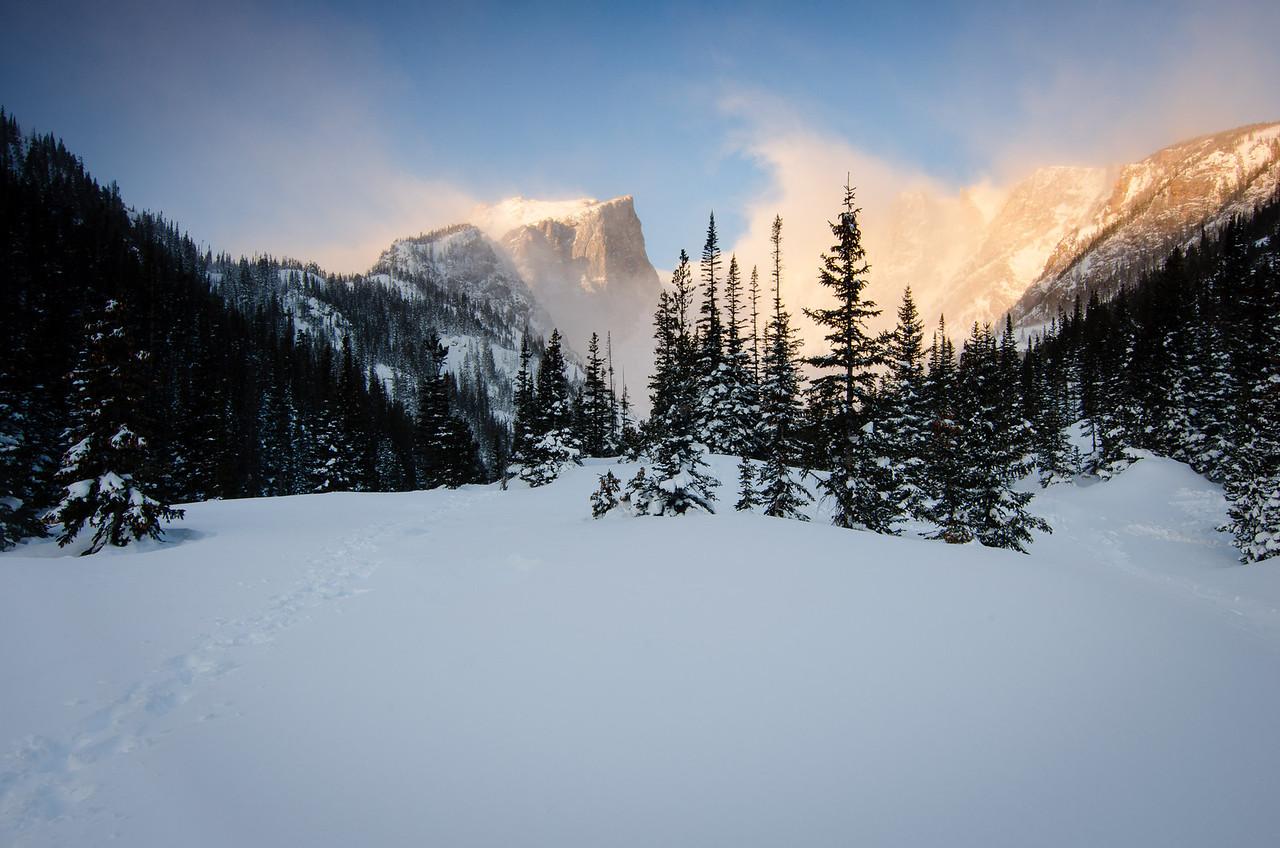 Winter's Presence