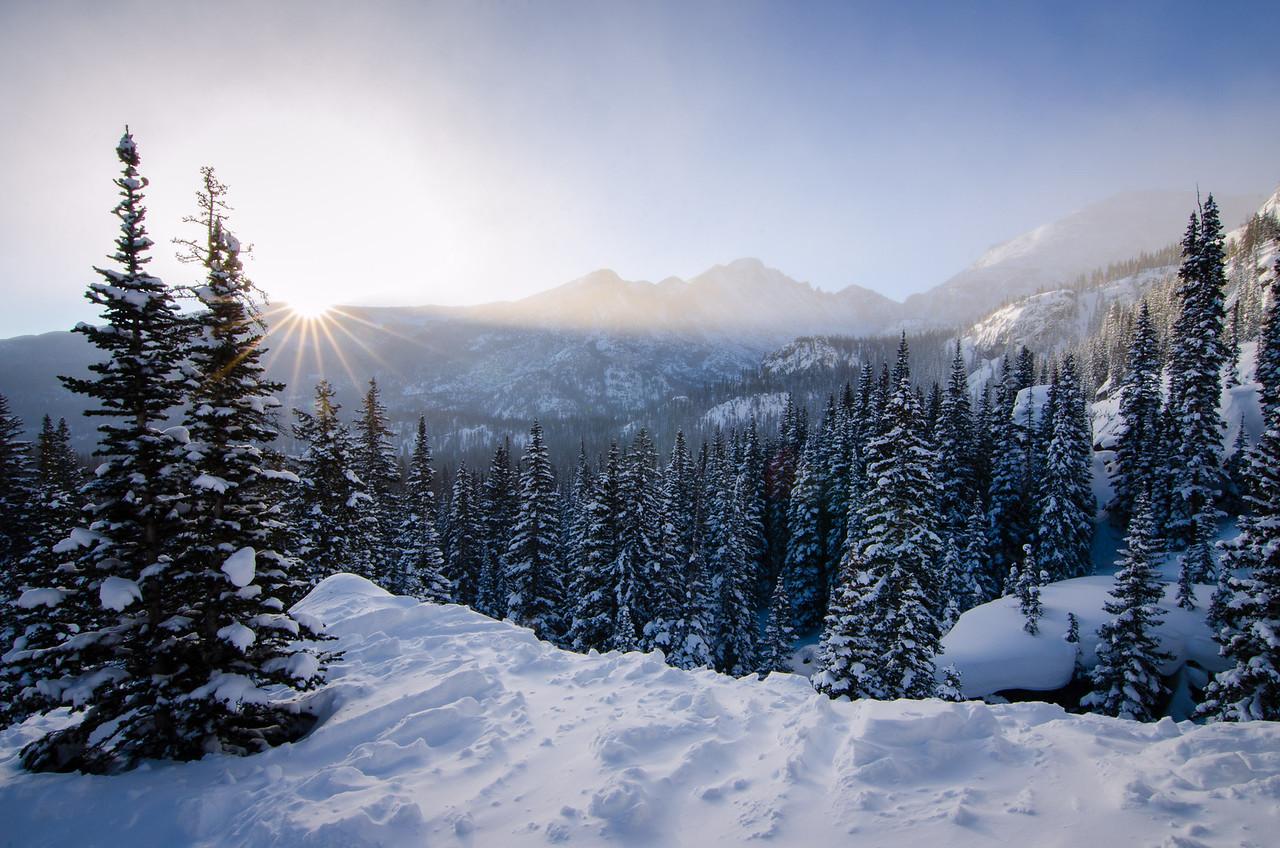 Winter Awakening