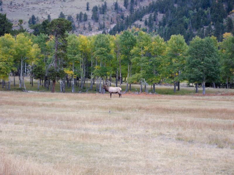 2008-9-27 Rocky Mountain Park-34-2