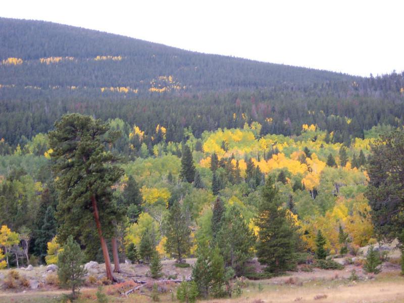 2008-9-27 Rocky Mountain Park-36