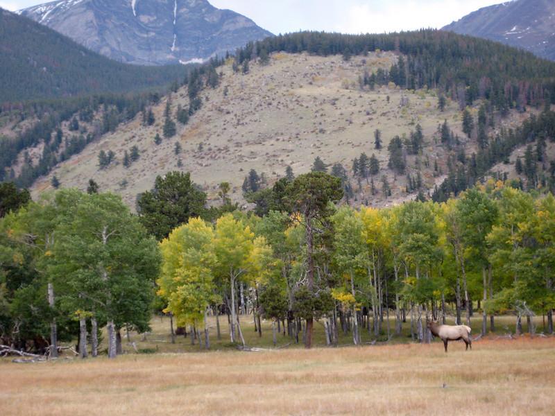 2008-9-27 Rocky Mountain Park-35