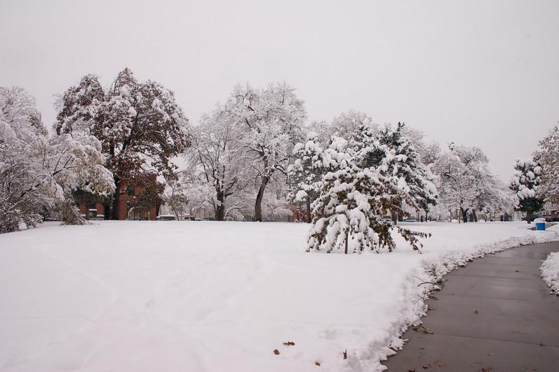 2009-10-29 October Snow Storm 24