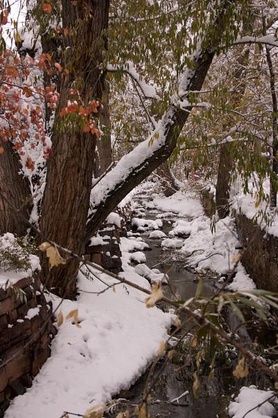 2009-10-29 October Snow Storm 15