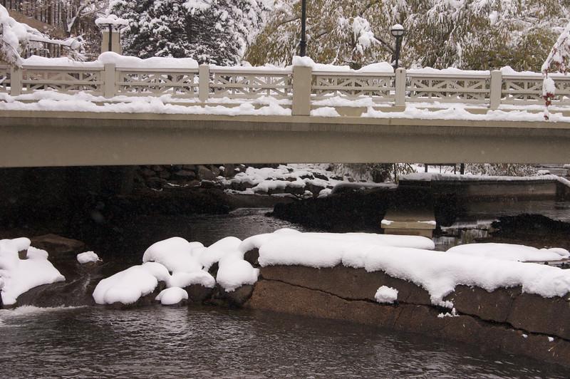 2009-10-29 October Snow Storm 27
