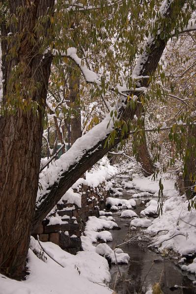 2009-10-29 October Snow Storm 16
