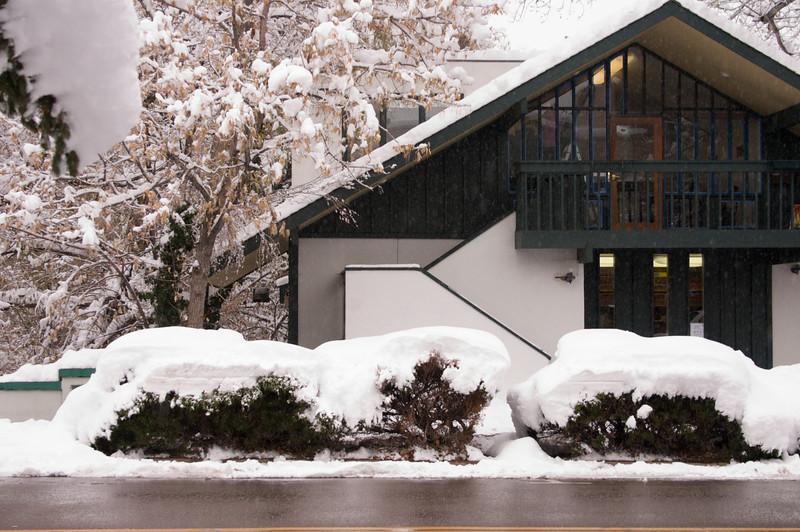 2009-10-29 October Snow Storm 14