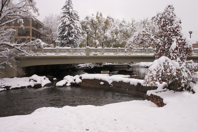 2009-10-29 October Snow Storm 25
