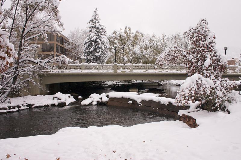 2009-10-29 October Snow Storm 26
