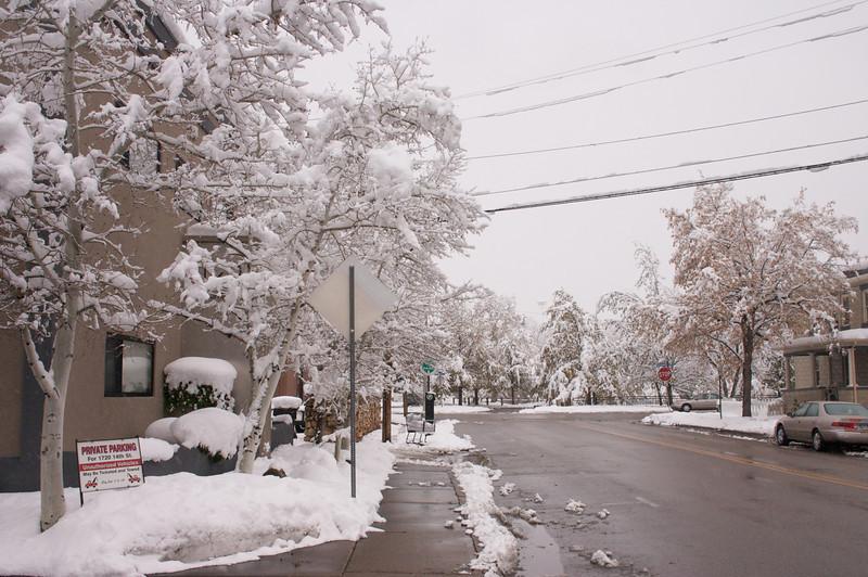 2009-10-29 October Snow Storm 20