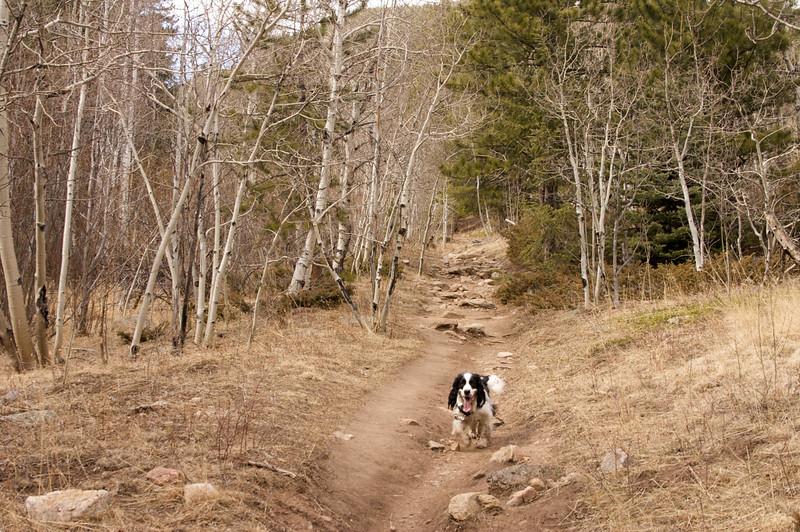 2009-3-21 Hiking Horseshoe 5