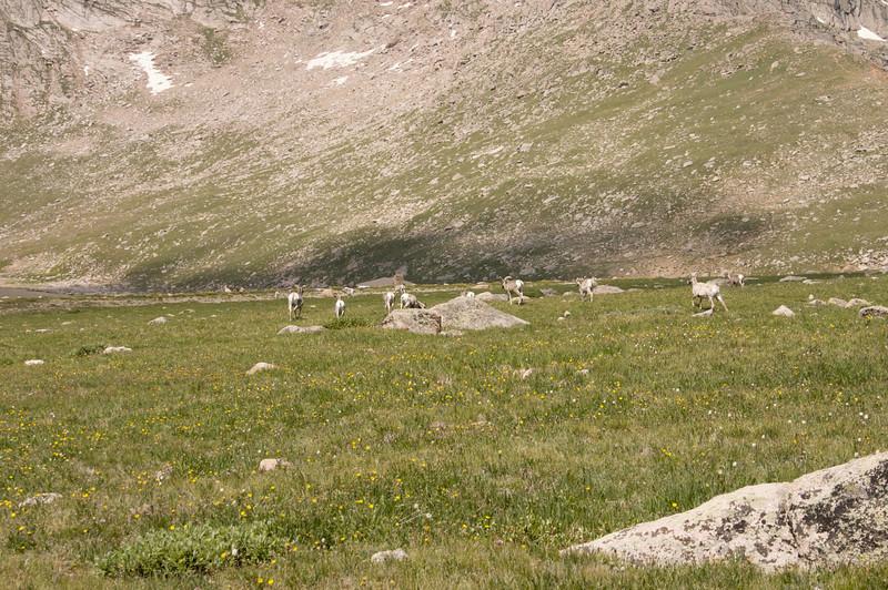 2009-8-1 Camping  022