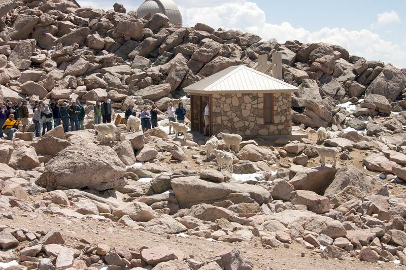2009-8-1 Camping  031
