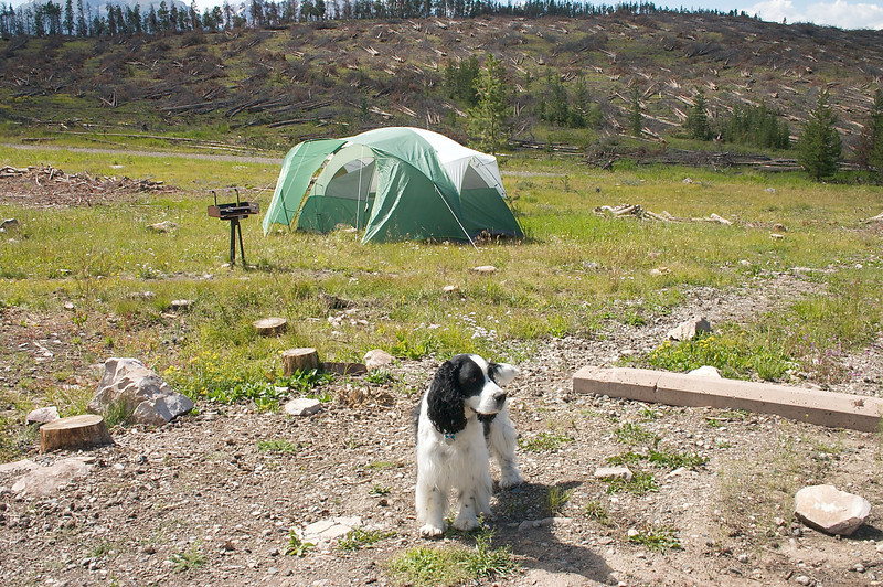 2009-8-1 Camping  013
