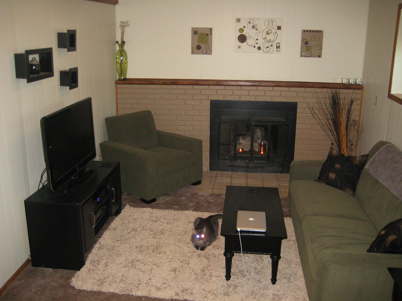 Family room. The walls were faux wood paneling with a white fireplace. Bob & I painted it the day after we moved in.